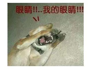 uifan,tongshiliangxinglei_2.png